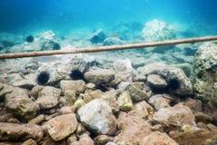 Vecchia vista della corda da subacqueo nell'oceano caraibico fotografie stock