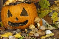 Vecchia zucca ammuffita Ricordo della celebrazione di Halloween Putrefazione sulla zucca Decorazione spaventosa del giardino di H immagini stock libere da diritti