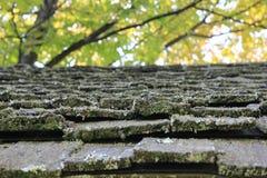Vecchie assicelle del tetto di scossa Fotografie Stock Libere da Diritti