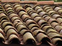 Vecchie assicelle muscose Fotografia Stock Libera da Diritti