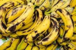 Vecchie banane Fotografie Stock
