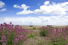 Vecchie barche abbandonate sulla spiaggia Fotografie Stock Libere da Diritti