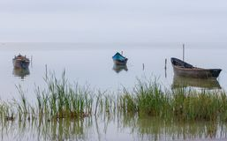 Vecchie barche a remi sul lago a tempo di tramonto Immagini Stock Libere da Diritti