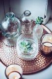 Vecchie bottiglie Fotografie Stock