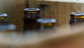 Vecchie bottiglie da birra Immagine Stock Libera da Diritti