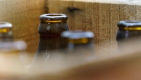 Vecchie bottiglie da birra Fotografie Stock