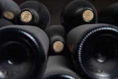 Vecchie bottiglie di vino polverose Fotografie Stock Libere da Diritti