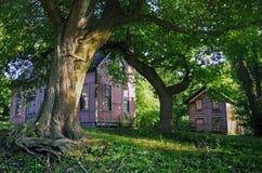 Vecchie case nella città di Richmond immagine stock libera da diritti