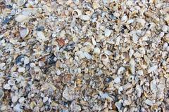 Vecchie coperture alte chiuse sulla spiaggia Fotografia Stock Libera da Diritti