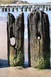 Vecchie coppie. Immagini Stock Libere da Diritti
