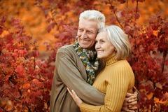Vecchie coppie al parco di autunno Immagini Stock