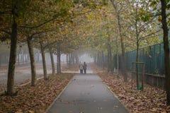 Vecchie coppie che camminano nel parco immagini stock
