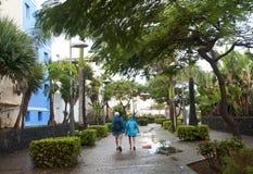 Vecchie coppie che camminano nel parco fotografie stock libere da diritti