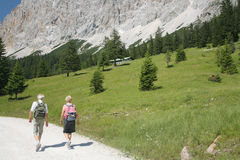 Vecchie coppie che fanno un'escursione nelle alpi Fotografie Stock