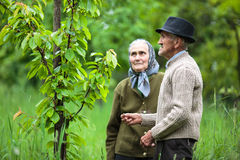 Vecchie coppie degli agricoltori nel frutteto Immagini Stock Libere da Diritti