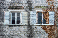 Vecchie finestre coperte di edera Fotografia Stock Libera da Diritti