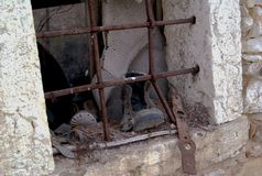 Vecchie finestre e memorie Immagine Stock