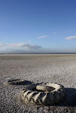 Vecchie gomme al mare di Salton Fotografie Stock Libere da Diritti