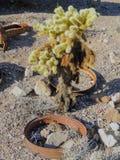 Vecchie gomme con le punte della ruota di vagone del metallo nel deserto in Arizona in una città abbandonata di estrazione minera Immagini Stock Libere da Diritti