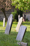 Vecchie lapidi in un cimitero Immagini Stock