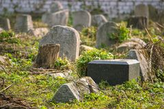 Vecchie lapidi in un cimitero rurale Fotografia Stock