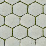 Vecchie lastre per pavimentazione esagonali. Struttura senza cuciture. Fotografia Stock Libera da Diritti