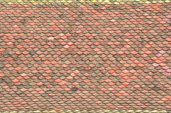 Vecchie mattonelle di tetto Fotografia Stock