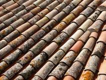 Vecchie mattonelle di tetto con la muffa e la muffa Immagini Stock Libere da Diritti