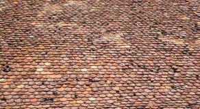Vecchie mattonelle di tetto con muschio su loro immagine stock libera da diritti