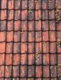 Vecchie mattonelle di tetto rosse Immagini Stock Libere da Diritti