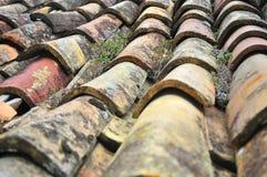 Vecchie mattonelle in Osp Fotografia Stock Libera da Diritti