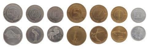 Vecchie monete slovene isolate su bianco Immagini Stock Libere da Diritti