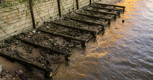 Vecchie palle di legno a sinistra di vecchio pilastro sulla sponda del fiume Fotografia Stock Libera da Diritti
