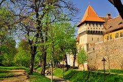 Vecchie parete e torre della difesa Fotografie Stock