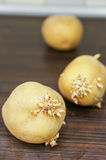Vecchie patate Fotografia Stock