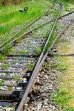 Vecchie piste del treno Immagine Stock Libera da Diritti