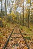 Vecchie piste del treno di registrazione su Ridge Parkway blu Immagine Stock
