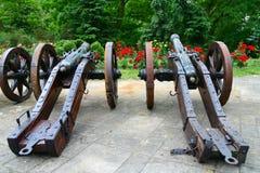 Vecchie pistole nel giardino Fotografie Stock Libere da Diritti