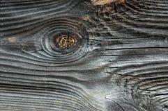 Vecchie plance del pino Immagine Stock Libera da Diritti