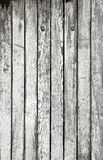 Vecchie plance di legno bianche Fotografia Stock