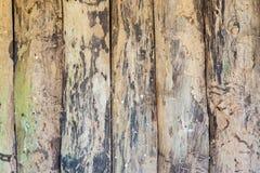 Vecchie plance ruvide del legno duro Immagini Stock Libere da Diritti