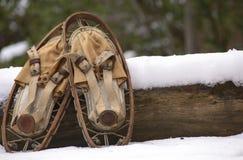 Vecchie racchette da neve II fotografia stock libera da diritti