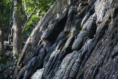 Vecchie rocce Immagini Stock