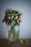 Vecchie rose Immagine Stock