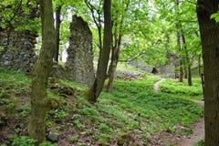 Vecchie rovine di pietra del castello nel giorno di estate caldo della foresta Fotografie Stock Libere da Diritti