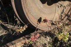 Vecchie ruota e ferrovia ferroviarie Fotografie Stock Libere da Diritti