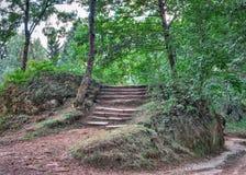 Vecchie scala di pietra in parco Immagine Stock