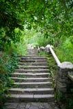 Vecchie scale Immagini Stock