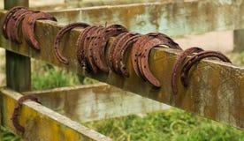 Vecchie scarpe del cavallo Fotografia Stock