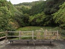 Vecchie sedie di legno nel giardino di Japaness e nel backgroun del veiw della montagna Fotografie Stock